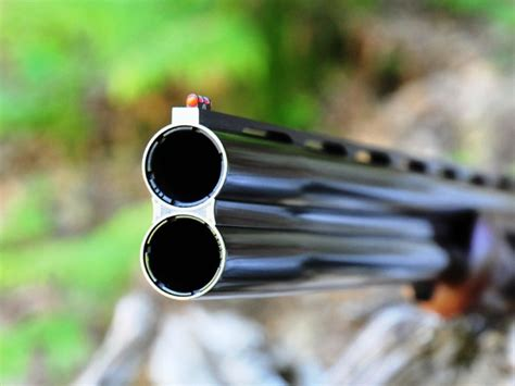porto d armi venatorio perde il fucile mentre caccia una denuncia a terranuova