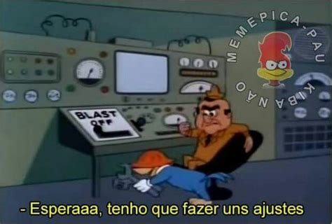 woodpecker pranks pica pau memes memes memes meme and humor