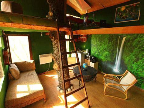 tree inside house treehouse masters inside www pixshark images