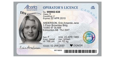 Class 5 License in Alberta: Things You Should Know