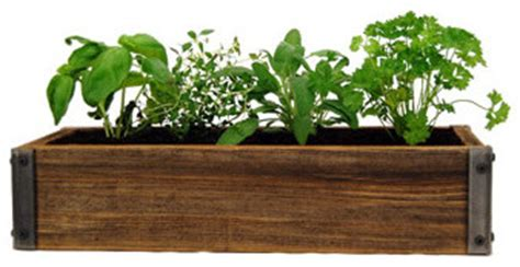 Indoor Herb Planter Box by Rustic Wood Planter Box With Culinary Herb Garden