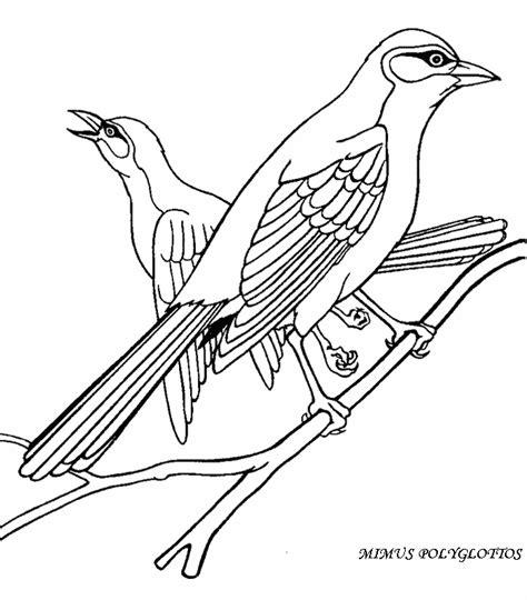 hawaiian birds coloring pages alvarium nostrum k 246 nyvkapt 225 r madarak 201 s f 193 k napja 05 10
