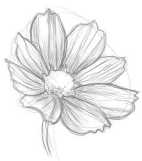dibujar flores faciles paso paso inittowinitorg m 225 s de 25 ideas incre 237 bles sobre flores para dibujar