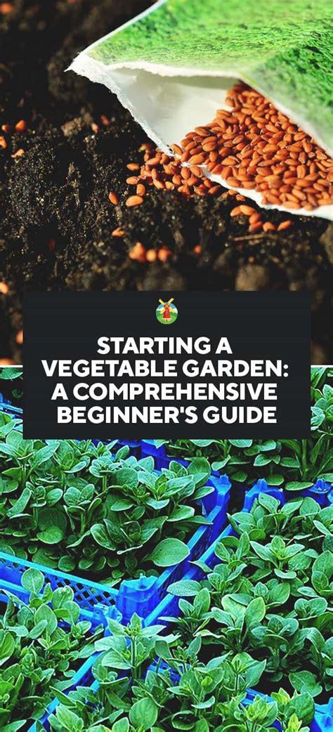 Starting A Vegetable Garden For Beginners Starting A Vegetable Garden A Comprehensive Beginners