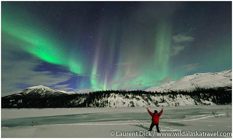 when to go to alaska for northern lights wild alaska travel alaska northern lights tour photos