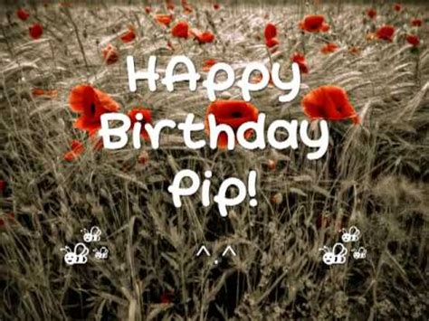Pip Search Happy Birthday Pip