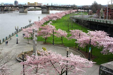 Park Portland Oregon by File Waterfront Park Portland Jpg