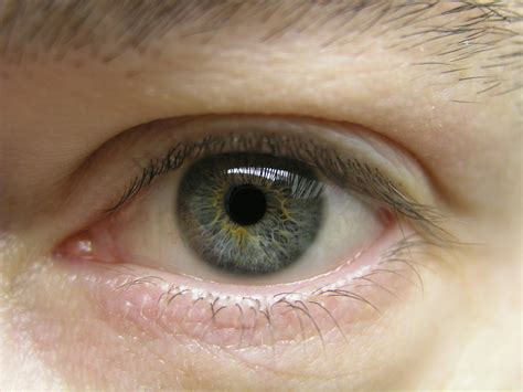 eye color and personality scientists say your eye color reveals information about