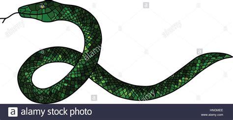 doodle snake green doodle snake stock vector illustration vector