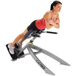 back extensions machine cybex 45 degree back extension source