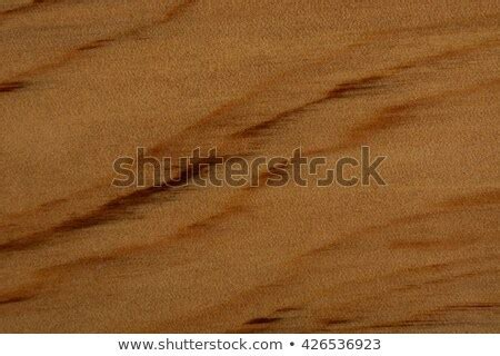 stock images royalty  images vectors shutterstock