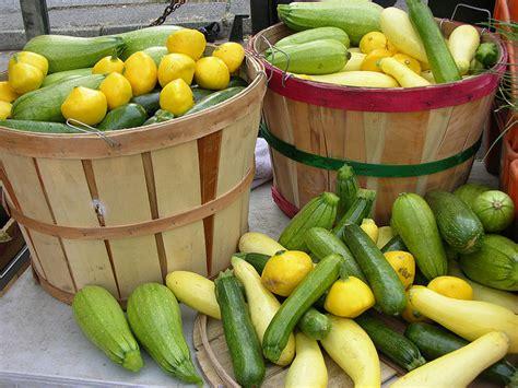 alimento organico agricultura sustent 225 vel brasileira pensamento verde
