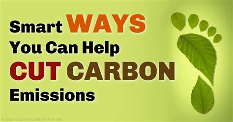 7 Ways To Cut Your Carbon Emissions by Could Carbon Emissions Be Cut 70 By 2030