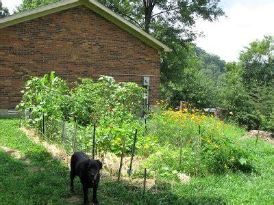 Family Farm And Garden Many La by Garden Patch Farms Il Todayline5j