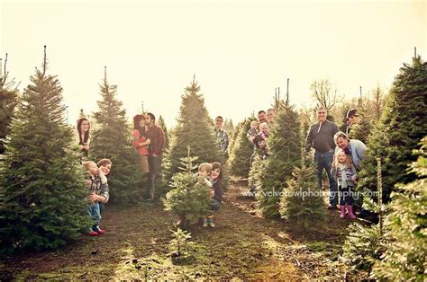 large family photo ideas christmas tree farm large