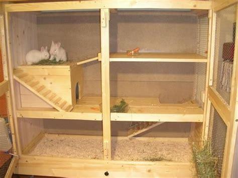frettchen stall selber bauen 220 ber 1 000 ideen zu kaninchenk 228 fig auf