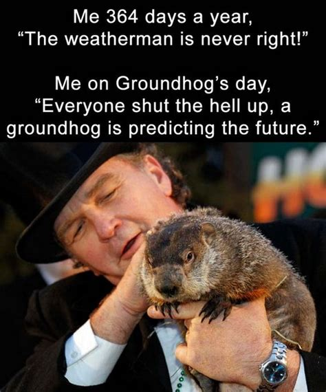 groundhog day quotes prognosticator daily lol barnorama