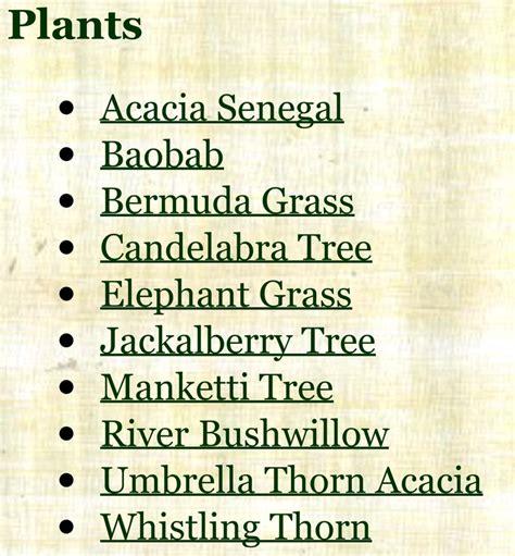 Tropical Grassland Plants List - dominant plants in the african savanna grasslands african savanah biome year 4 term 3 pinterest