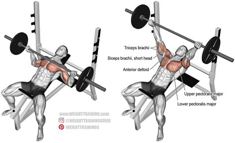 bench press exercise incline grip barbell bench press exercise guide