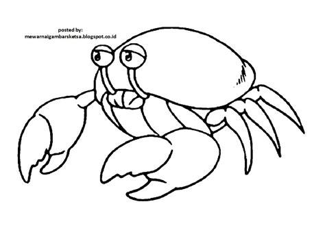 mewarnai gambar mewarnai gambar sketsa hewan kepiting 1