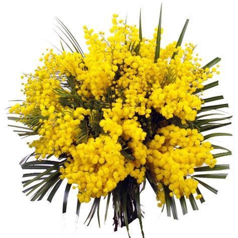 fiori di bak internationale vrouwendag en mimosa taart maak je eigen