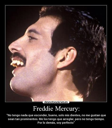 Freddy Mercury Meme - the gallery for gt freddie mercury funny face
