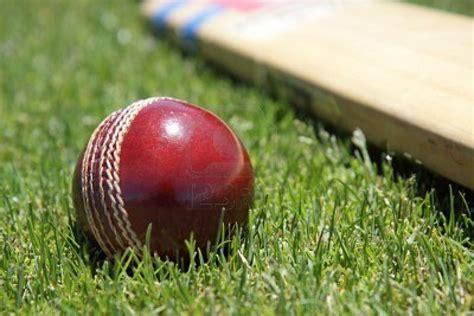 wallpaper hd cricket cricket ball hd wallpaper