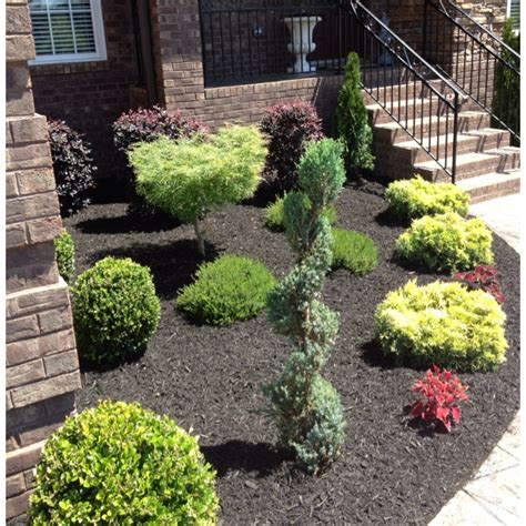 new landscaping black mulch outdoor landscape