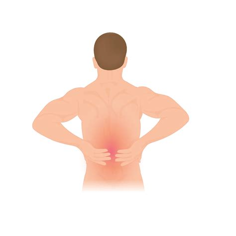 standing desk lower back height adjustable standing desks can help prevent neck and