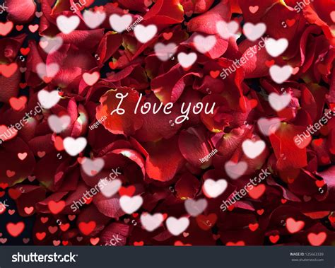 love you heart and roses beautiful rose red petals heart text stock photo 125663339