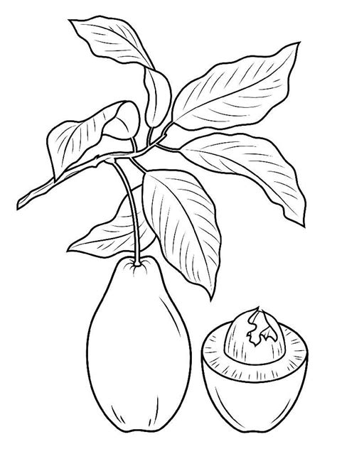 jay z coloring pages jay z free coloring pages