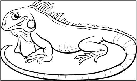 imagenes de animales vertebrados reptiles dibujos de reptiles animales vertebrados dibujos y