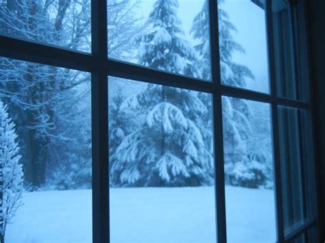 leslie rosenberg blog snow falling on cedars