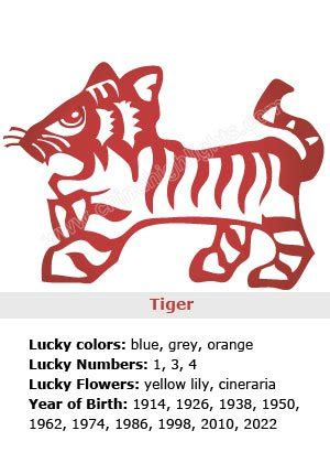 new year of tiger meaning new year of the tiger meaning 28 images tiger zodiac