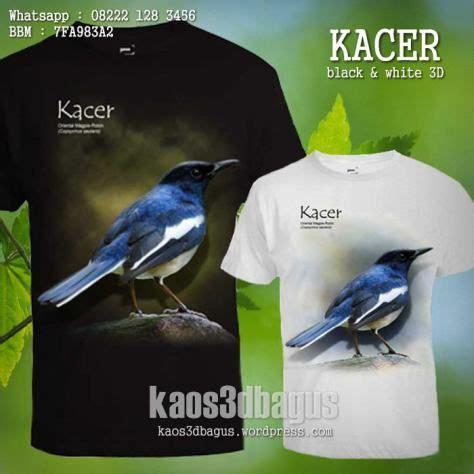 Kaos Kacer Mania Sls10 1000 gambar tentang kaos kicau mania kaos 3d burung kicau di hewan pria bergaya