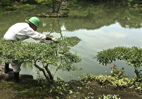 immagini giardini giapponesi giardini giapponesi quel nelle foto di solito non