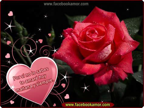 imagenes de rosas rojas para facebook imagenes de amor para muro facebook hermosas flores