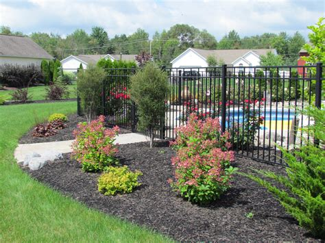 small trees and shrubs for landscaping in front yard hot landscaping tree and shrub care michael grimm services