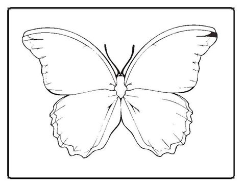 butterfly coloring pages that you can print 94 butterfly coloring pages that you can print