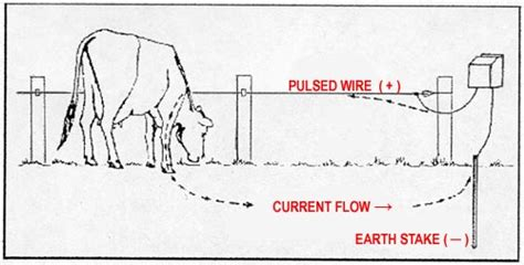 diagrams electric fence wiring diagram 2 wire electric