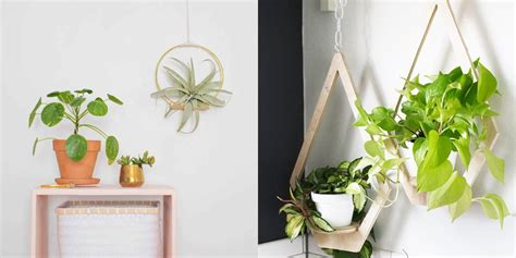creative ways  plant  vertical garden