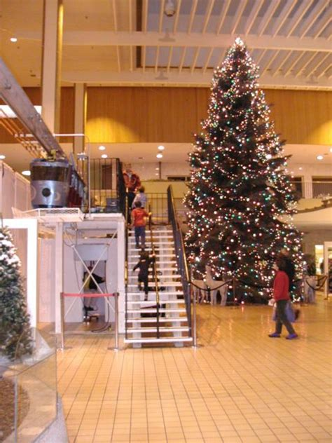 artificial christmas trees rochester ny images of tree rochester tree decoration ideas
