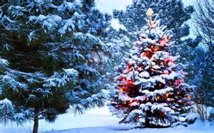 hintergrundbilder weihnachten winter hd hintergrundbilder