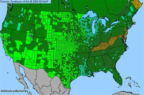 allergy map related keywords suggestions for ragweed map