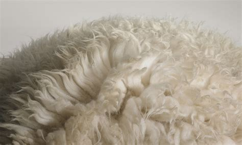 sheepskin rug how to clean cleaning sheepskin rug meze