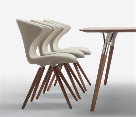 Cool Dining Chairs Modern Style Dining Chairs Home Design