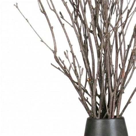 Vase With Branches by Botanicals Birch Branches
