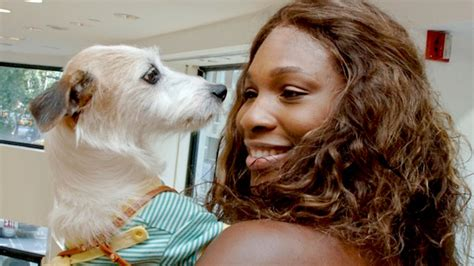 williams dogs total pro sports serena williams jackie dead at 16