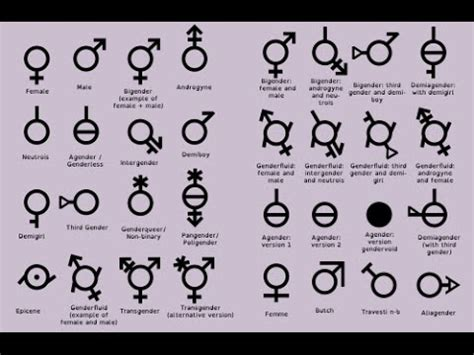 complete list of all u complete list of all the genders do not ever misgender us