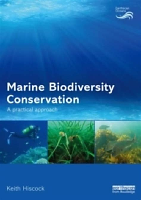 Essay Biodiversity Conservation Environment by Essay Biodiversity Conservation